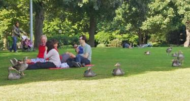 Planten un Blomen: Parkanlage im Herzen von Hamburg