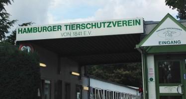 Tierheim Süderstraße – Pflege und Vermittlung von Fundtieren