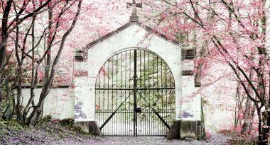 Die 6 schönsten Hochzeitslocations in der Hansestadt Hamburg