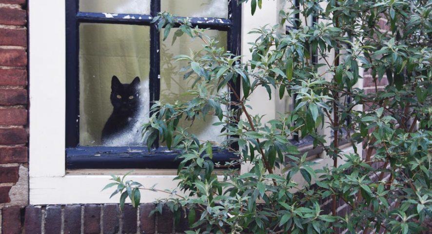 Schutz Vor Kaltem Winterwetter Turen Und Fenster Richtig Abdichten
