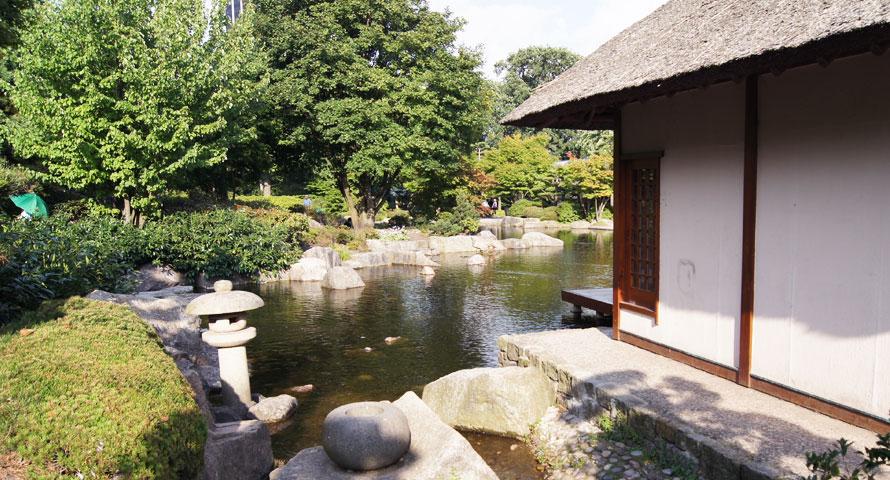 Einen Blick in den Japanischen Garten